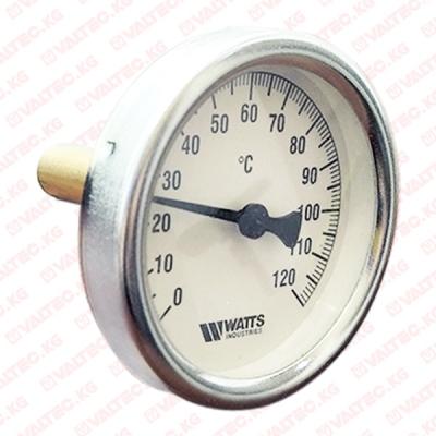 Термометр 100 Watts